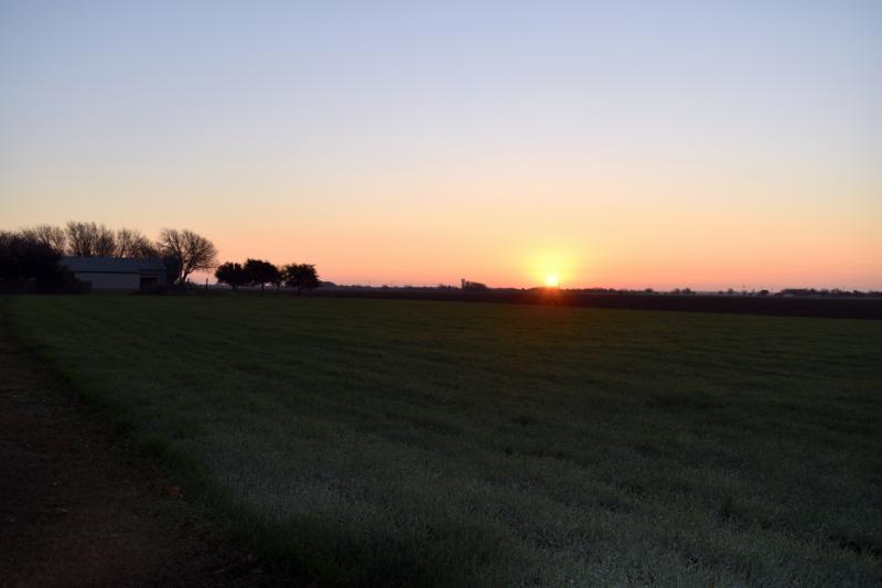 Sunrise over Hawkins Farmhouse Ales